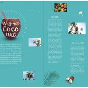 GoldenRide42–Kokos